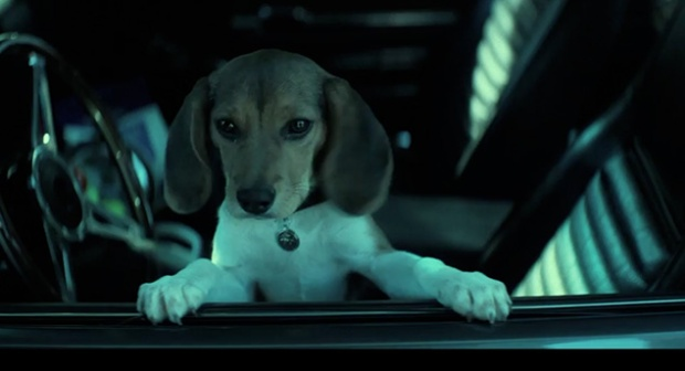 R.I.P.  Dog Wick